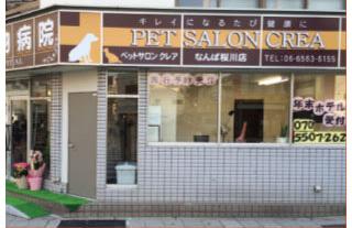 窓から様子が見えるペットサロンクレアなんば桜川店