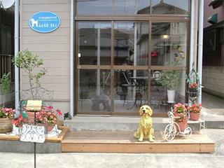 ラブラドールの置物と花が植えられたお店前