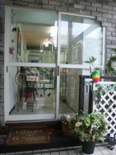 観葉植物が置かれている入口