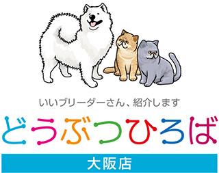 犬と猫の可愛いイラスト