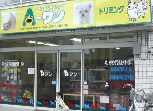 黄色い看板が目印の広いお店