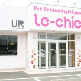 真っ白な壁に鮮やかなピンクのお店ロゴ