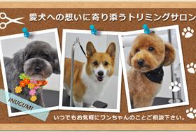 愛犬への想いに寄り添うトリミングサロン