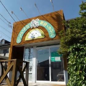 緑のある空気の良さそうな店舗