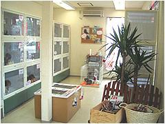 観葉植物が置かれた店内