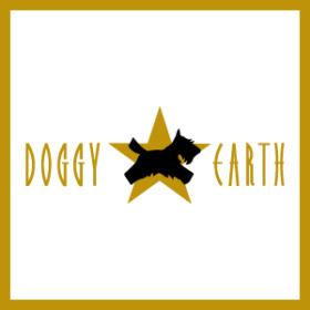 金色のロゴ