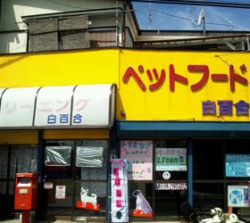 黄色で目立つ店舗