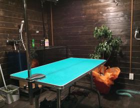 シックな部屋に置かれたトリミングテーブル