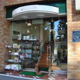 豪華な雰囲気の店舗入口