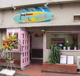 ピンクや水色のハワイ色が基調の外観