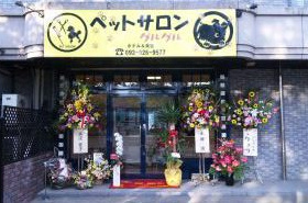 黄色に看板とたくさん飾られた開店祝い