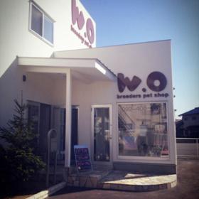 白い建物に大きく書かれたお店ロゴ