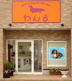 店の壁に大きく飾られたダックスフンドの写真