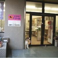 ピンクのお店表札